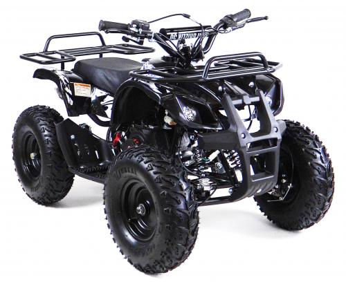 Motax ATV Mini Grizlik X-16 Big Wheel ( с электростартером)
