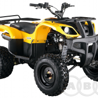 Apache 150 basic
